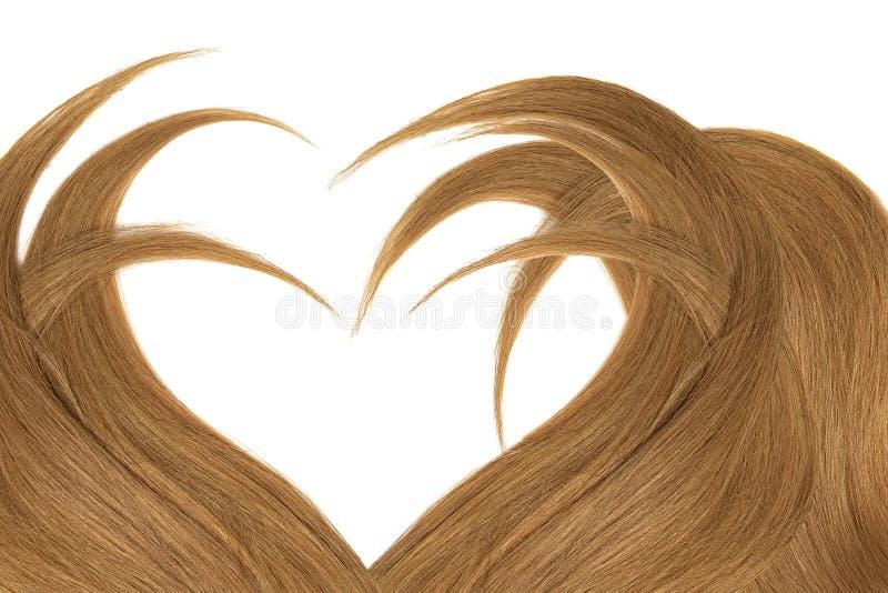 Cabelo de Brown na forma do coração, isolada no fundo branco fotografia de stock