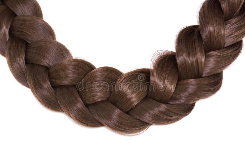 Cabelo do ` s das mulheres isolado no fundo branco Uma trança marrom do cabelo fotografia de stock