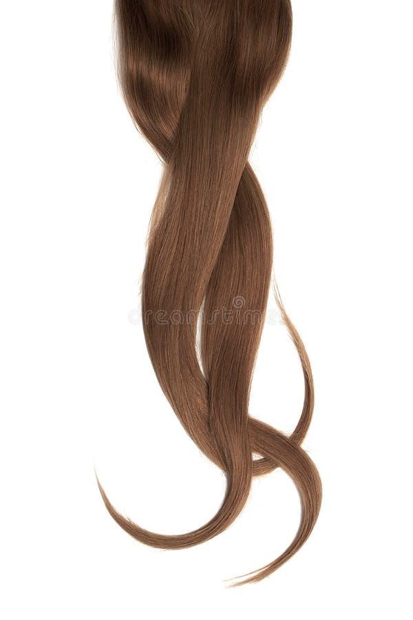 Cabelo natural escuro de Brown, isolado em um fundo branco foto de stock royalty free