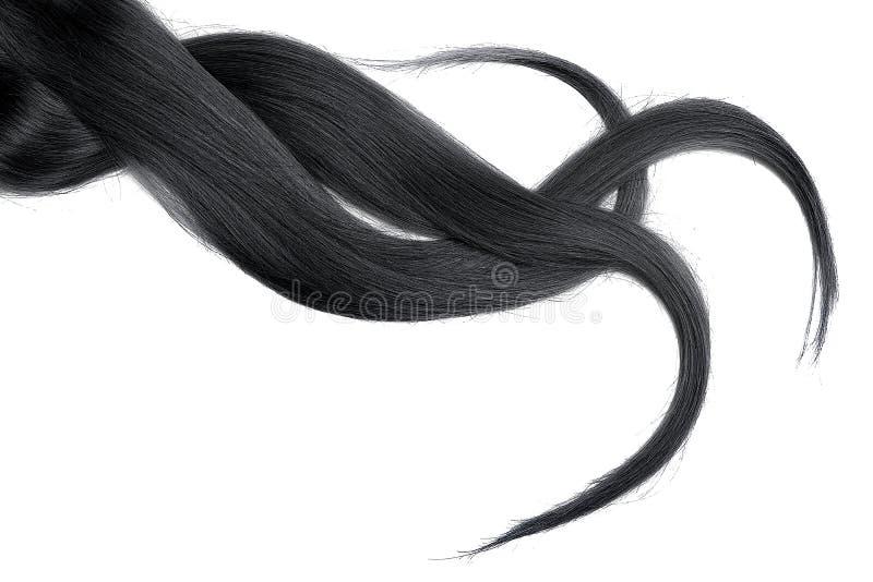 Cabelo natural preto, isolado em um fundo branco fotos de stock