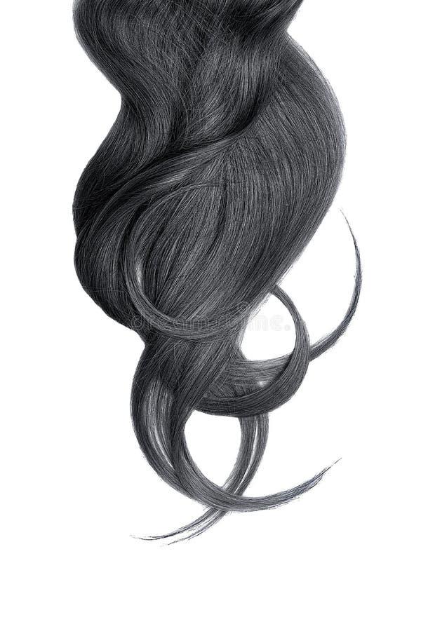 Cabelo natural preto, isolado em um fundo branco imagens de stock