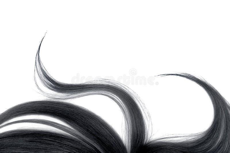 Cabelo preto bagunçado longo, isolado no fundo branco fotos de stock