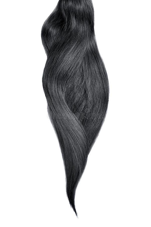 Cabelo preto, isolado no fundo branco Rabo de cavalo bonito longo foto de stock