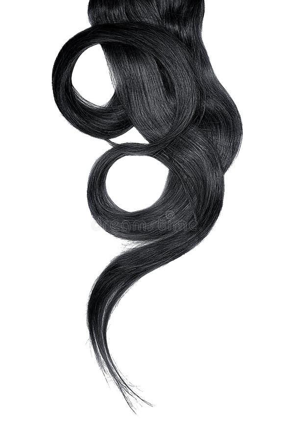 Cabelo preto isolado no fundo branco Rabo de cavalo bonito longo na forma do círculo fotos de stock