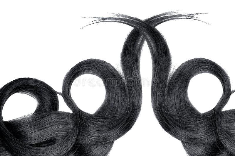 Cabelo preto isolado no fundo branco Rabo de cavalo bonito longo na forma do círculo fotografia de stock