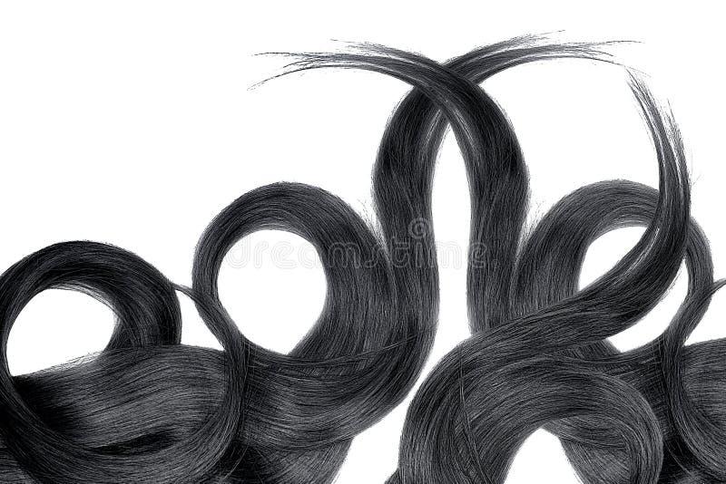 Cabelo preto isolado no fundo branco Rabo de cavalo bonito longo na forma do círculo imagem de stock