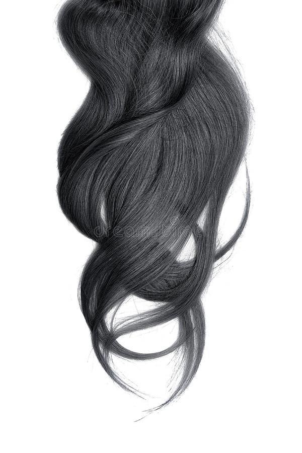 Cabelo preto, isolado no fundo branco Rabo de cavalo longo e bagunçado imagens de stock