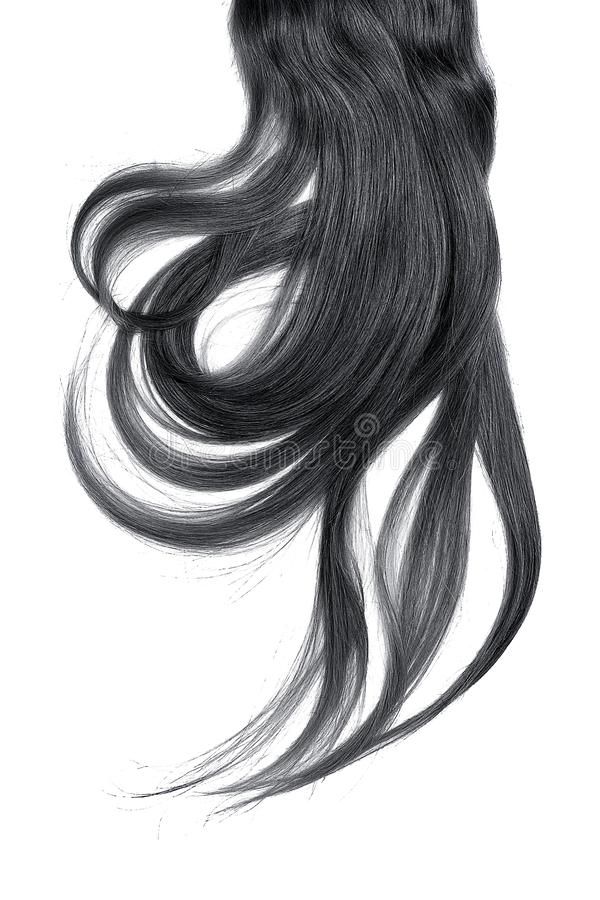 Cabelo preto, isolado no fundo branco Rabo de cavalo longo e bagunçado fotos de stock