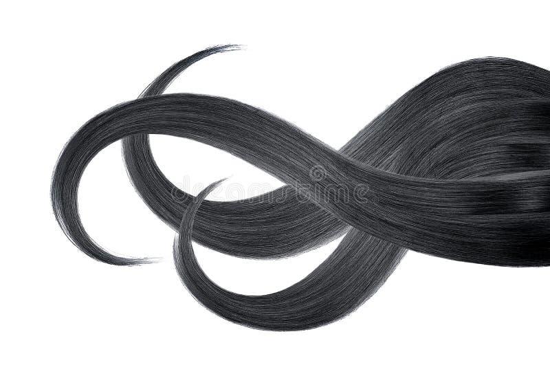 Cabelo preto, isolado no fundo branco Rabo de cavalo ondulado longo fotografia de stock