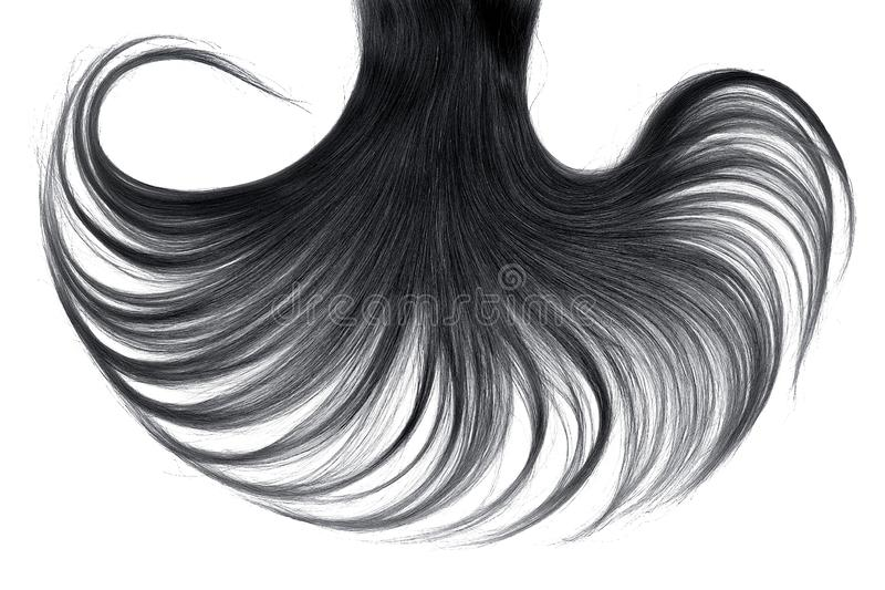 Cabelo preto luxúria isolado no fundo branco imagens de stock