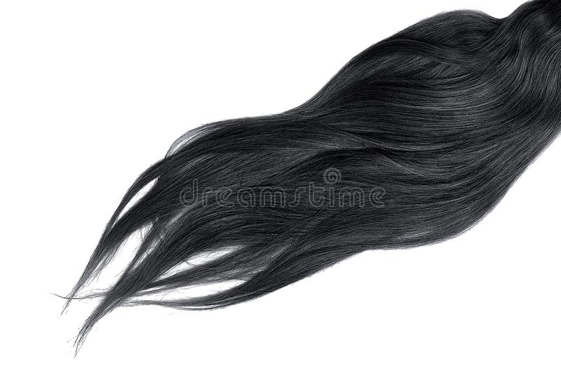 Cabelo preto luxúria isolado no fundo branco fotos de stock