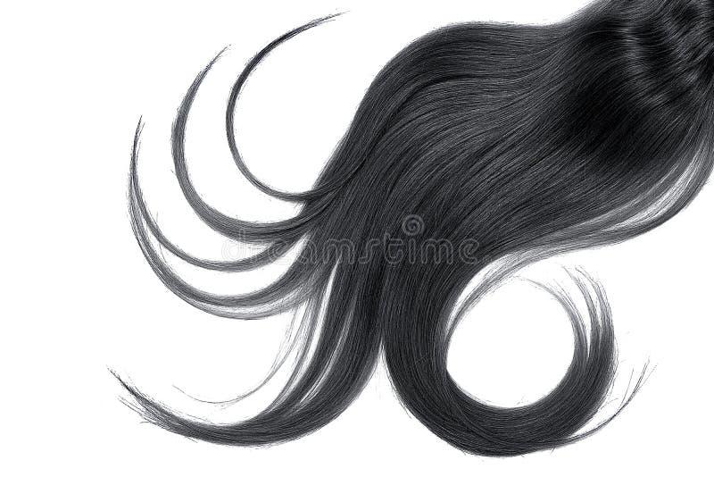 Cabelo preto luxúria isolado no fundo branco imagens de stock royalty free