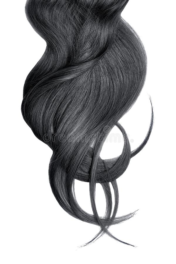 Cabelo preto luxúria isolado no fundo branco foto de stock royalty free