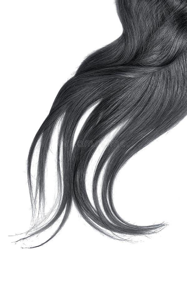 Cabelo preto luxúria isolado no fundo branco imagem de stock