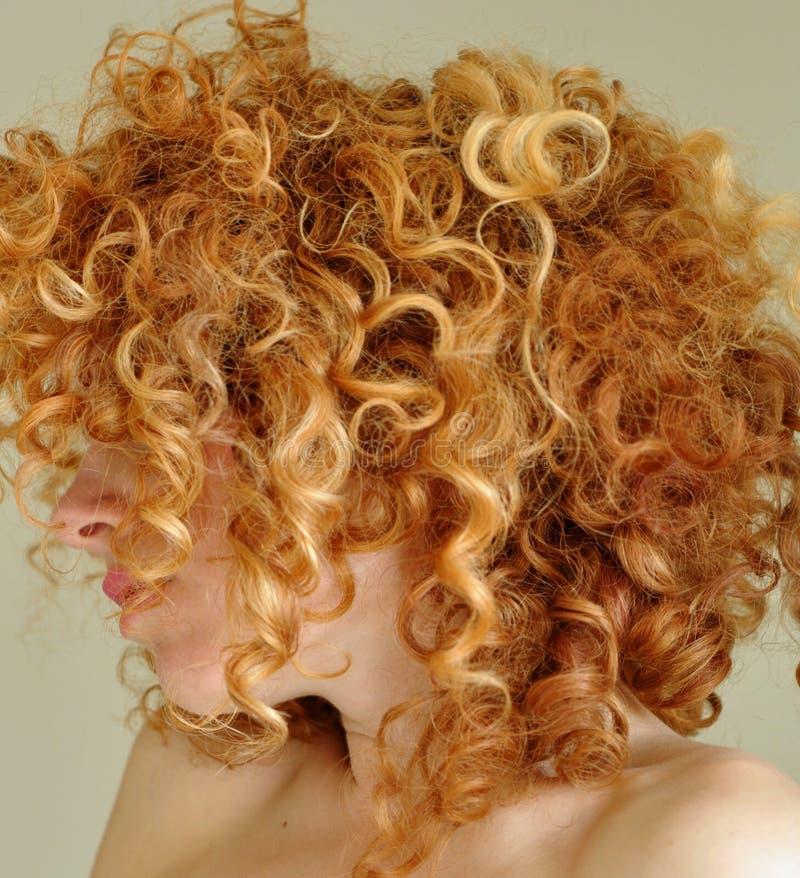 Cabelo vermelho curly desarrumado foto de stock royalty free