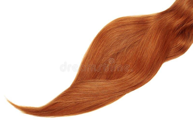Cabelo vermelho, isolado no fundo branco Rabo de cavalo bonito longo fotos de stock