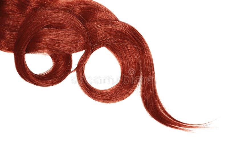 Cabelo vermelho isolado no fundo branco Rabo de cavalo bonito longo na forma do círculo fotos de stock