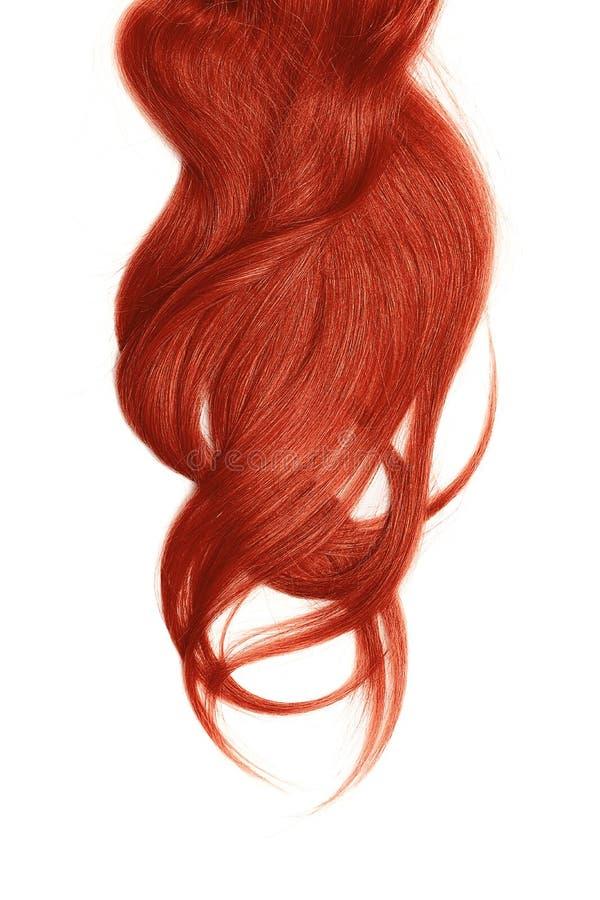Cabelo vermelho, isolado no fundo branco Rabo de cavalo longo e bagunçado imagens de stock