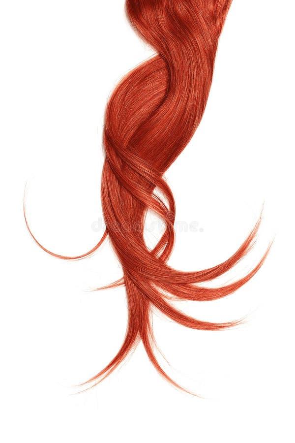 Cabelo vermelho, isolado no fundo branco Rabo de cavalo longo e bagunçado fotos de stock