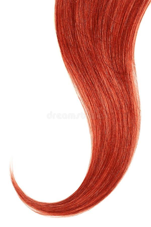 Cabelo vermelho isolado no fundo branco Rabo de cavalo ondulado longo fotografia de stock