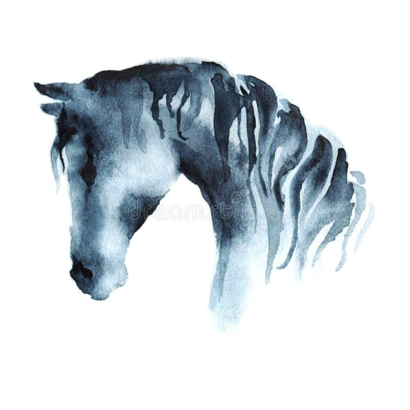 Cabeza de caballo de la pintura de la mano de la acuarela en blanco stock de ilustración