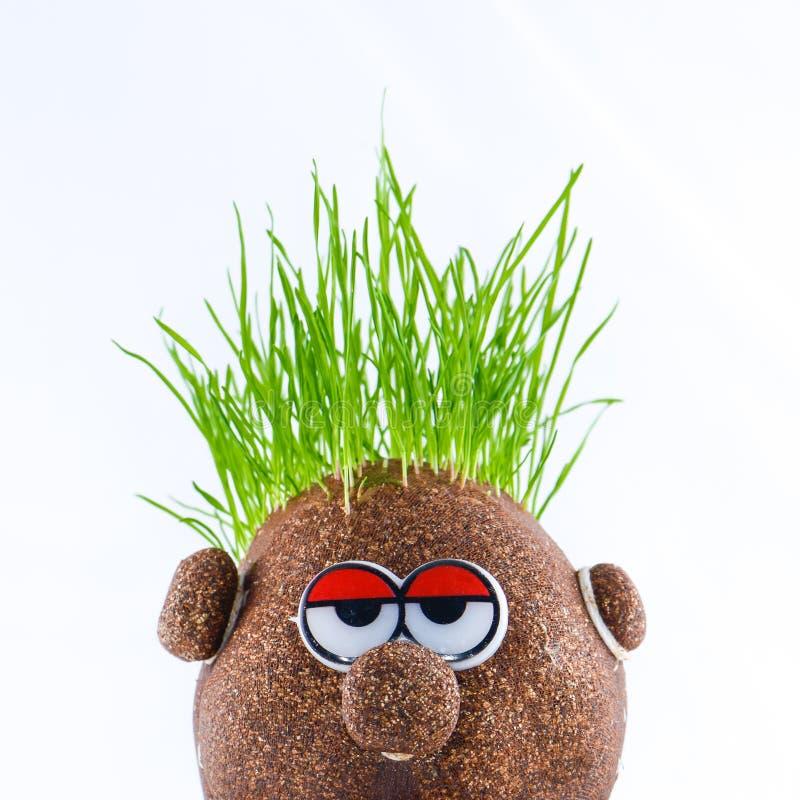 Cabeza de la patata con la hierba imagen de archivo