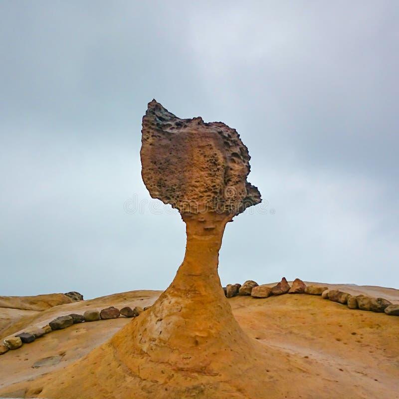 Cabeza de la reina de la roca en geopark del yehliu en Taiwán imagen de archivo libre de regalías