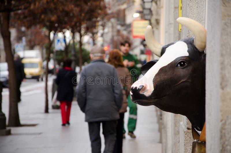Cabeza de la vaca imagenes de archivo