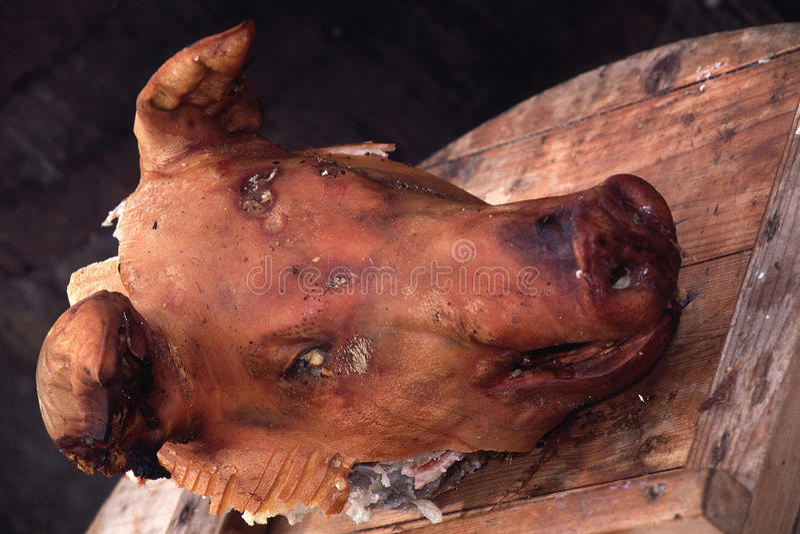 Download Cabeza de los cerdos asada imagen de archivo. Imagen de dinamarca - 44854855