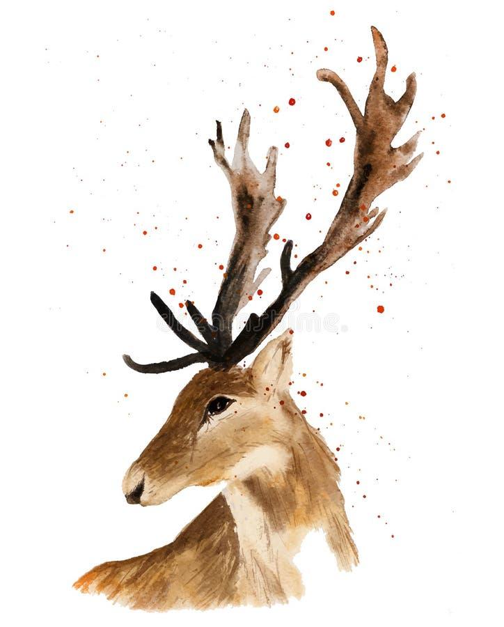 Cabeza de los ciervos aislada en el fondo blanco stock de ilustración