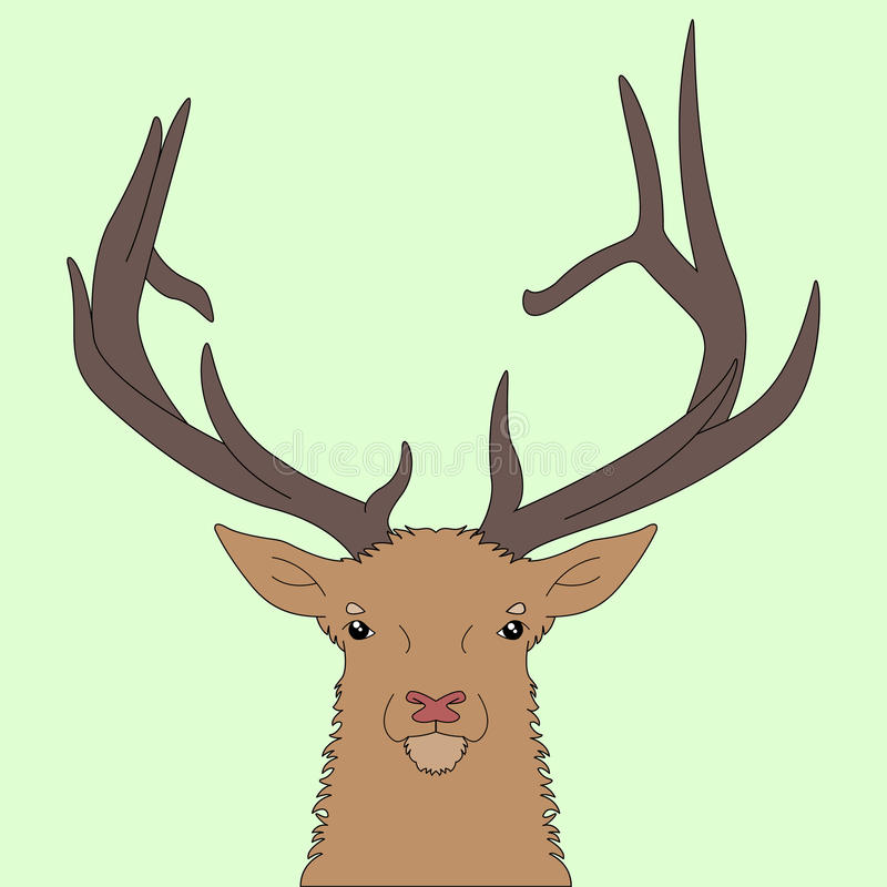 Cabeza de los ciervos del bosque fotografía de archivo libre de regalías