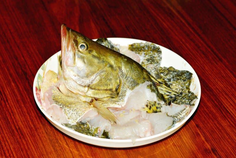 Cabeza de los pescados fotografía de archivo libre de regalías