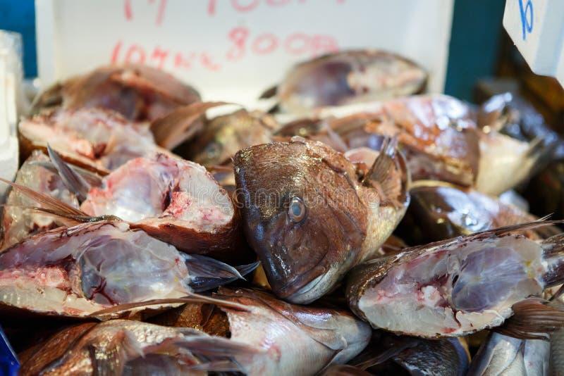 Cabeza de los pescados imagenes de archivo