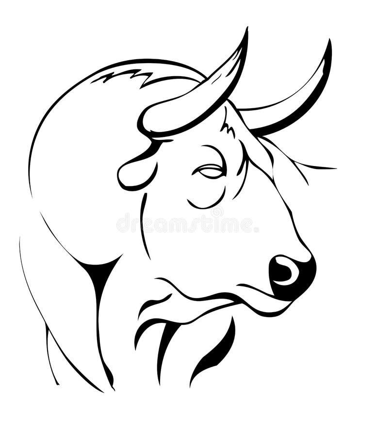 Cabeza de un toro libre illustration