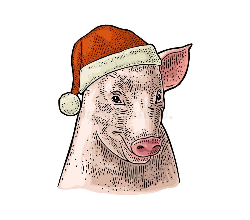 Cabeza del cerdo en el sombrero de Santa Claus Vector el ejemplo del grabado del vintage del color aislado en el fondo blanco Par stock de ilustración