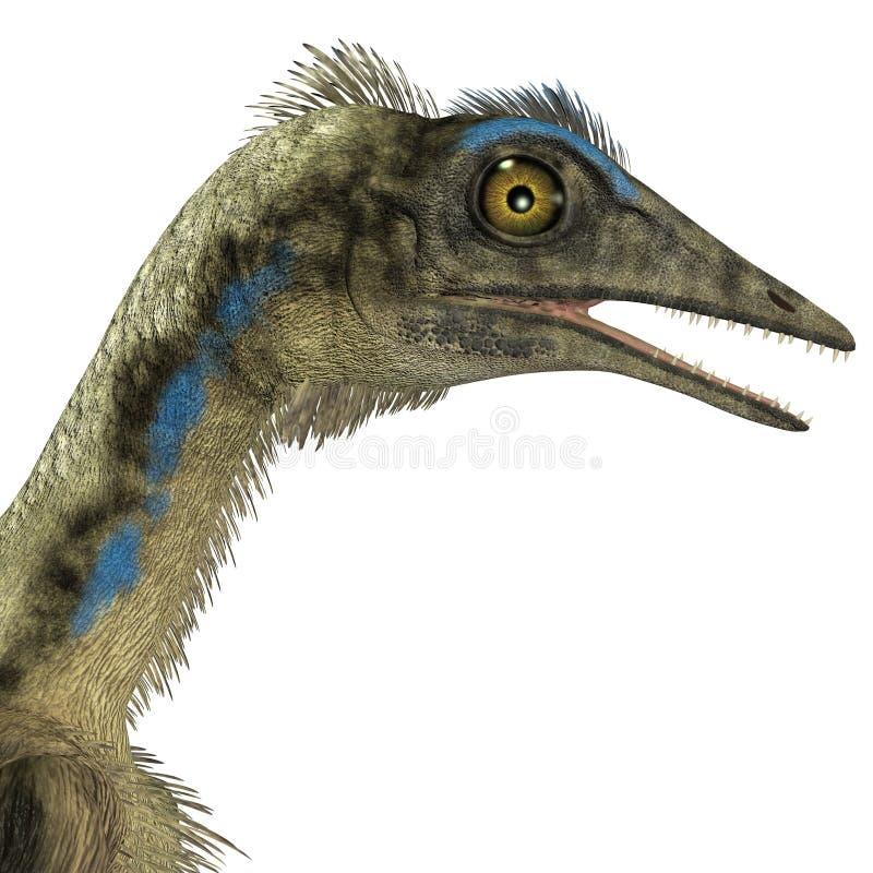 Cabeza del dinosaurio del Archaeopteryx ilustración del vector