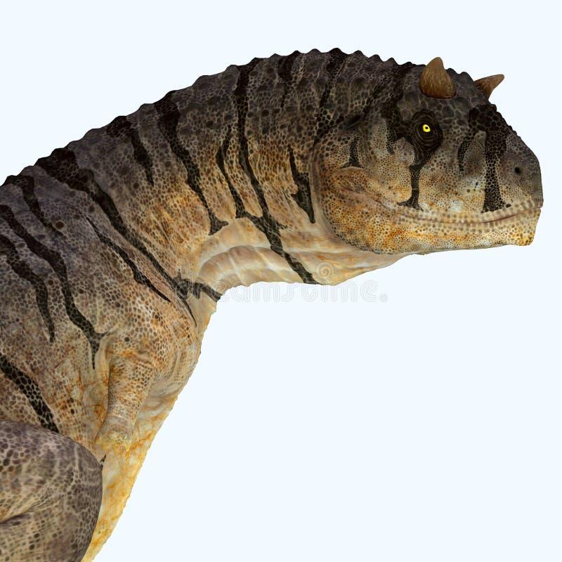 Cabeza del dinosaurio del sastrei del Carnotaurus ilustración del vector