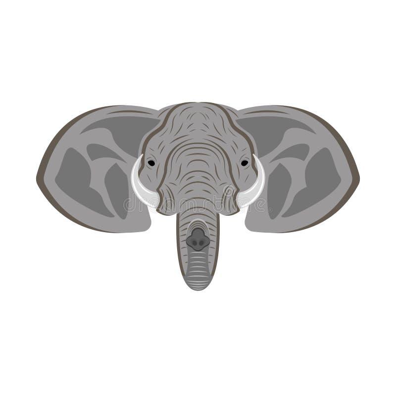 Cabeza del elefante con los oídos, tronco y colmillos, retrato animal como mascota o trofeo del safari ilustración del vector