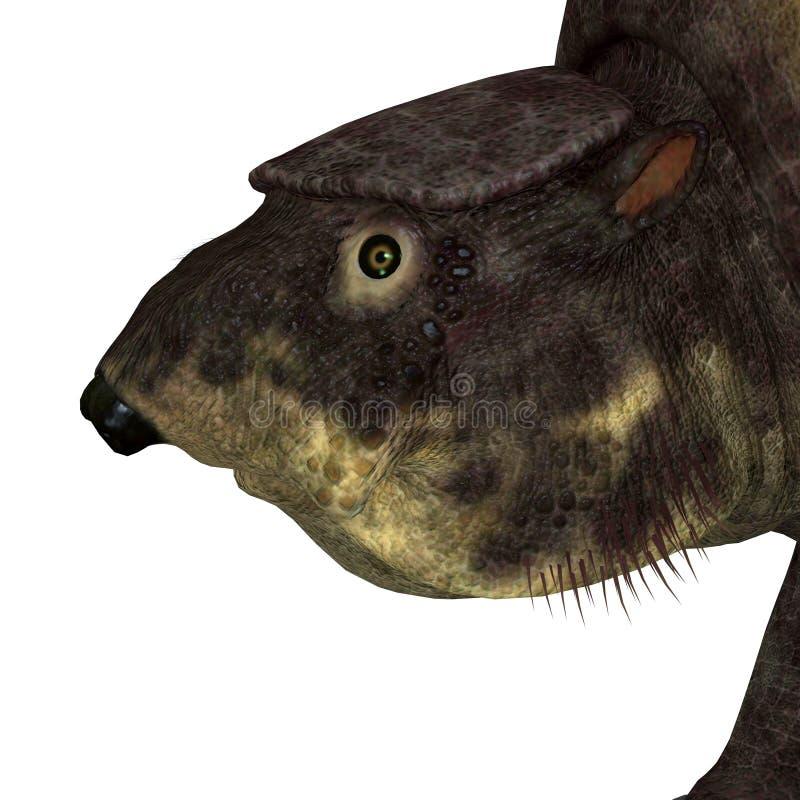 Cabeza del mamífero de Glytodont libre illustration