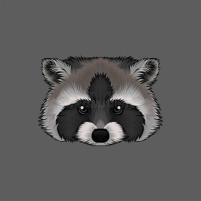 Cabeza del mapache, retrato del ejemplo dibujado mano del vector del animal salvaje ilustración del vector