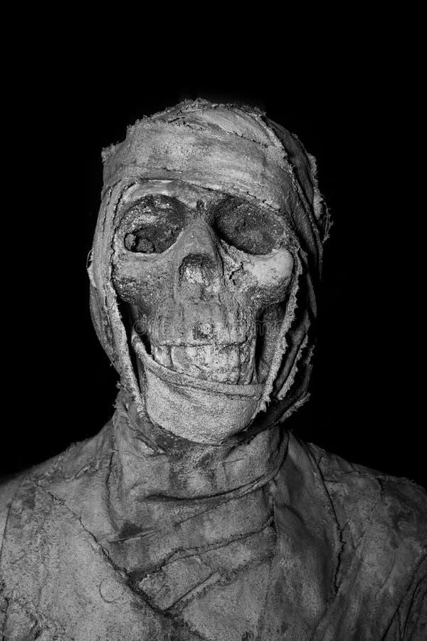 Cabeza del primer de la momia en fondo imagen de archivo libre de regalías