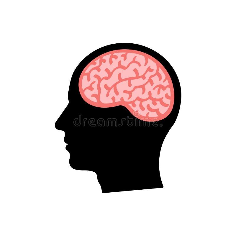Cabeza del ` s del hombre con la silueta del cerebro libre illustration