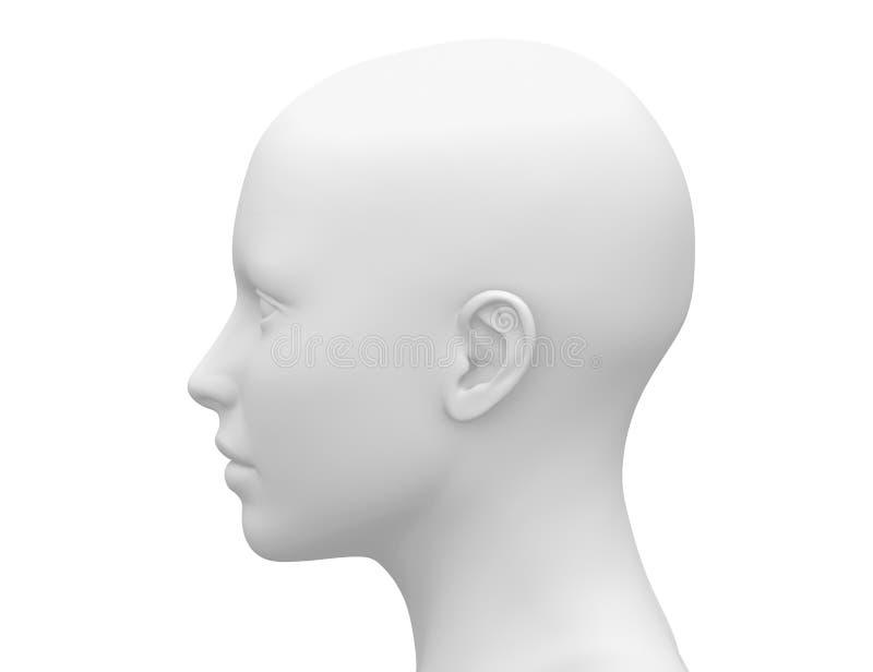 Cabeza femenina blanca en blanco - vista lateral