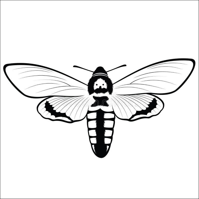 Cabeza Hawkmoth de la muerte s ilustración del vector