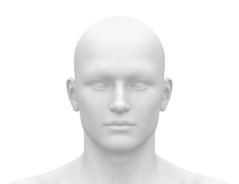 Cabeza masculina blanca en blanco - vista delantera ilustración del vector