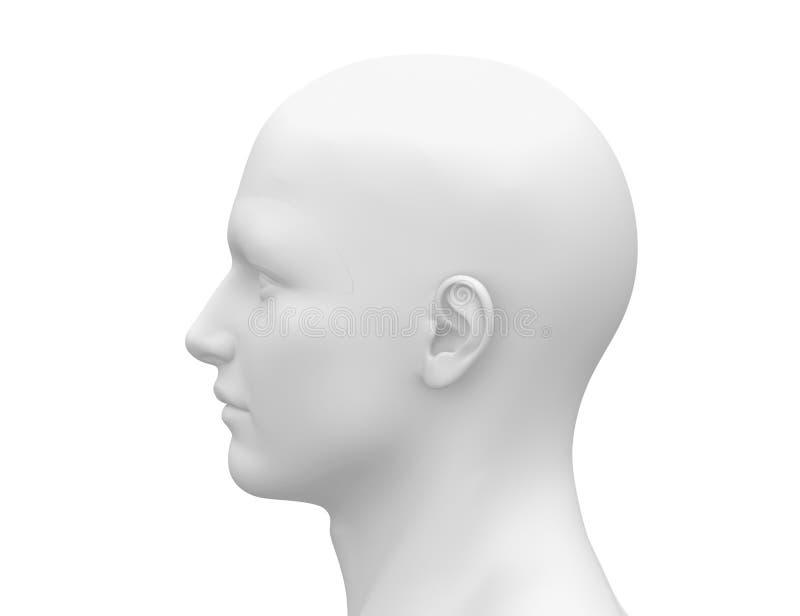 Cabeza masculina blanca en blanco - vista lateral ilustración del vector