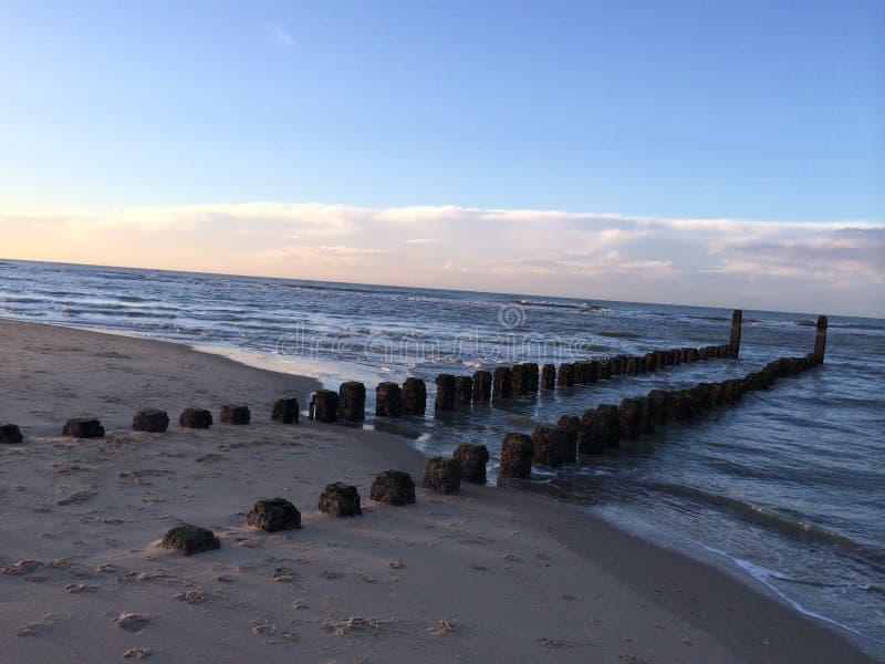 Cabezas de poste en la arena foto de archivo libre de regalías