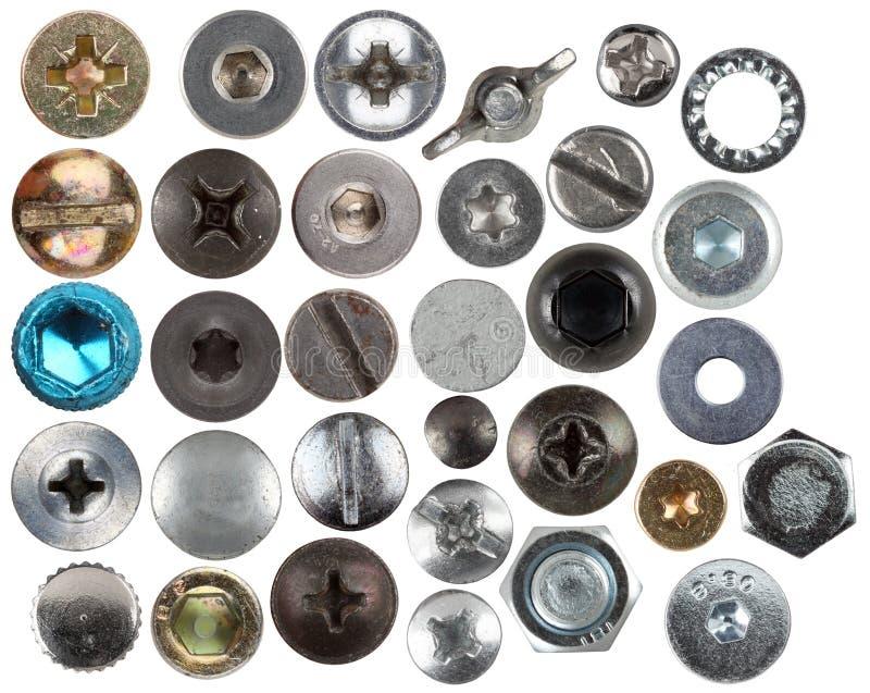 Cabezas de Srew fotografía de archivo