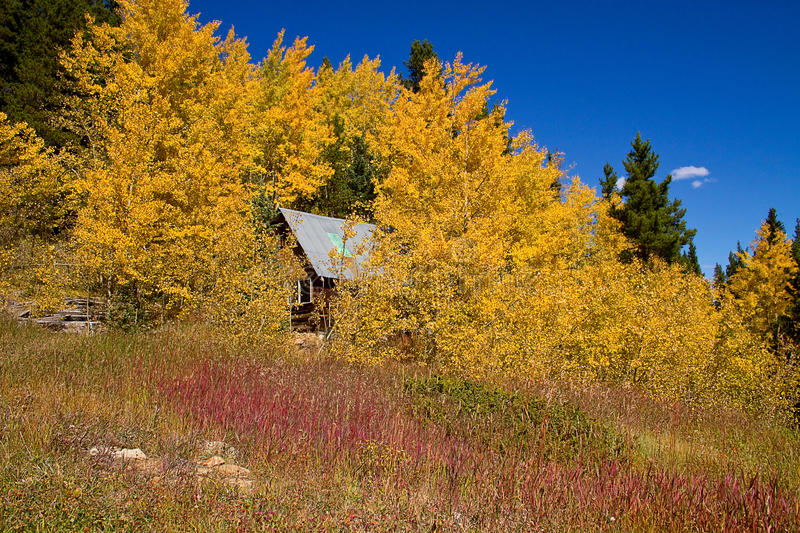 Download The Cabin stock photo. Image of aspens, mountains, yellow - 21341764