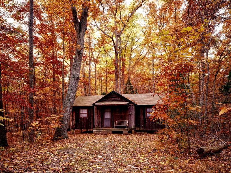 Cabin in autumn forest stock image
